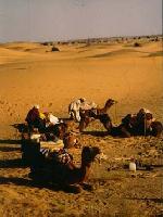 Camel Safari, Jaisalmer